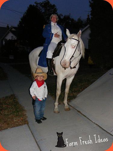 I found my horse